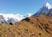 Machapuchare Mardi Himal Trek